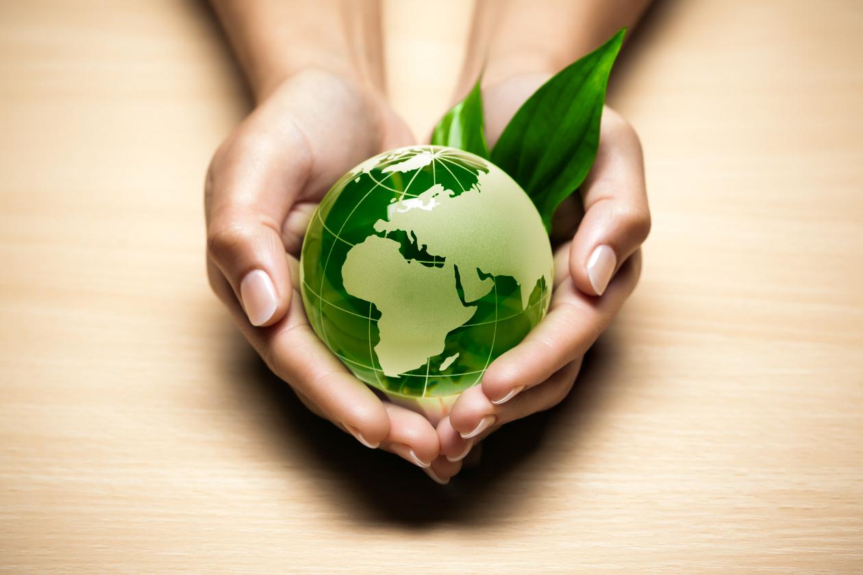 La Tierra es un bien común que Dios ha puesto para todas las criaturas y de la que el hombre es responsable de su cuidado