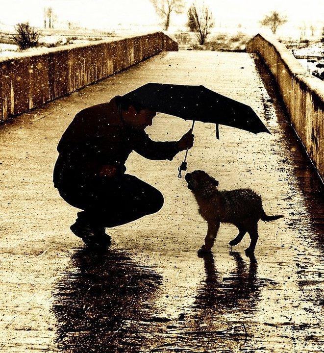 Aunque a los ojos de la gente algunas acciones puedan parecer insignificantes, nos pueden traer una inmensa recompensa