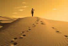 Seguir la Sunnah del Profeta, que la paz sea con él, que no es una imitación mecánica, sino preguntarse qué habría hecho él en cada situación.