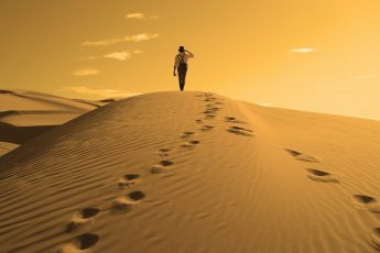 ¿Qué significa seguir la Sunnah del Profeta?